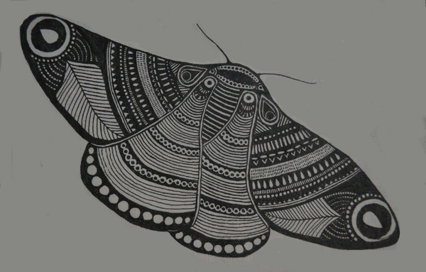 Hand-drawn moth by Deepti Ramakrishnan | Cupick