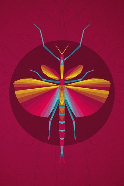 Wings by Vamsi Krishna | Cupick