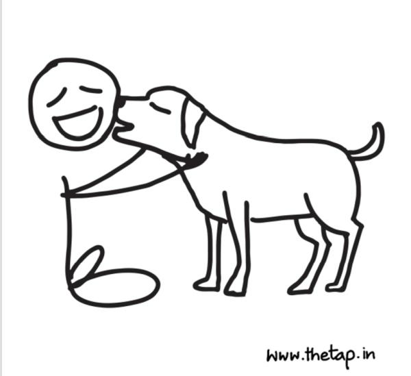 dog59